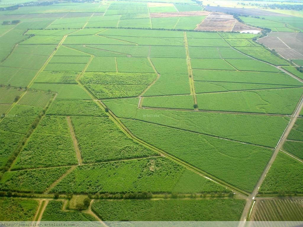 El presidente Santos no podrá entregarles las tierras del Estado a las trasnacionales