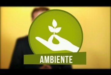 El derecho a un ambiente sano en Bogotá se encuentra amenazado: Manuel Sarmiento