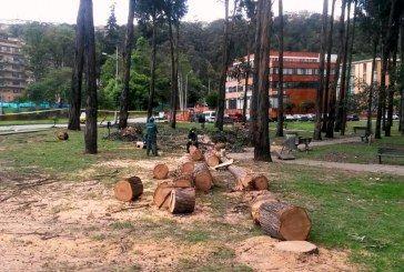 La administración del alcalde Peñalosa debe respetar los acuerdos con la comunidad del Bosque San Carlos.