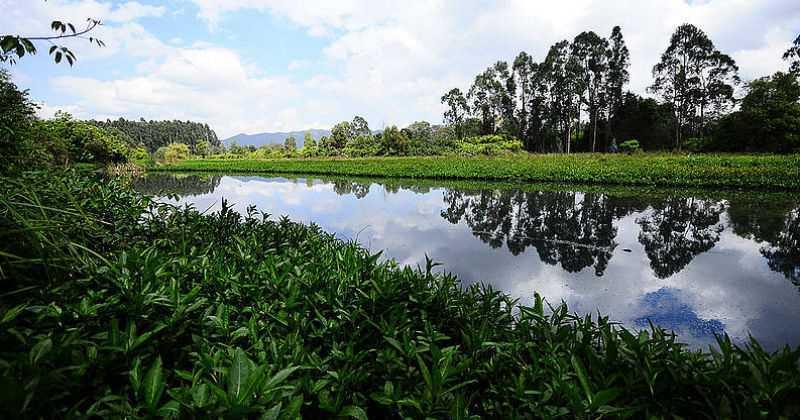 CAR  y Secretaría Distrital de Ambiente deberán convocar audiencia ambiental sobre el POT de Peñalosa